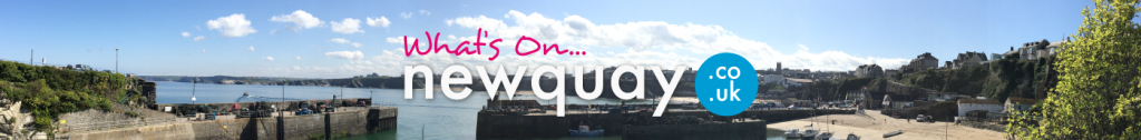 What's On in Newquay? There are so many events happening in Newquay, from gigs, surfing and skating festivals, music, sea safaris, cultural and seasonal and theatre events.