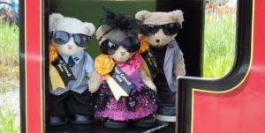 teddy bear picnic at Lappa Valley