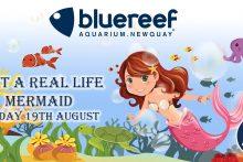Meet a mermaid at Blue Reef Aquarium Newquay